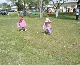Egg Hunt Fun