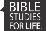 Bible Studies for Life in NSB
