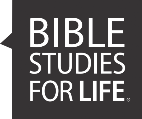 Bible Studies for Life in NSB Study Groups