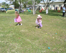 Egg Hunt Fun