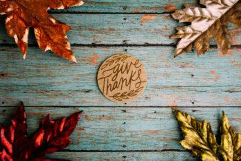 New Smyrna Beach Church Thanksgiving Message